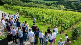 Camel Valley - Taste of Cornwall