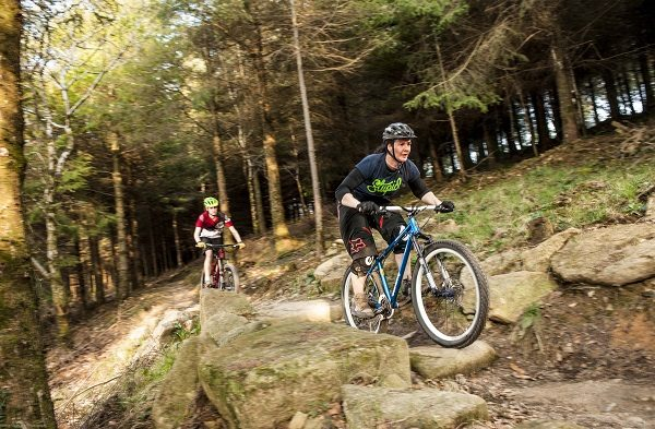 Cardinham Woods 600x393 - Active and Outdoors