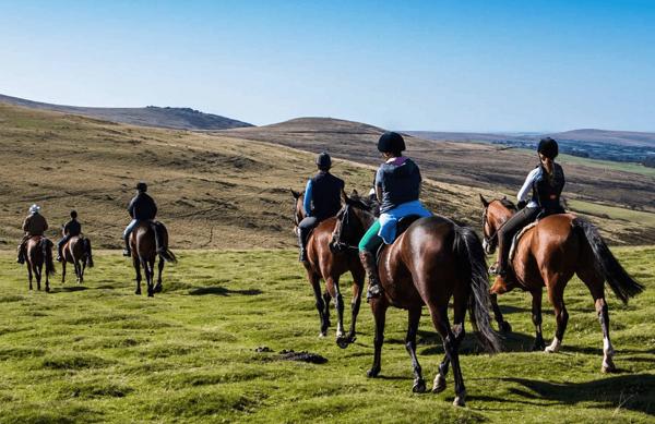 Horses 600x389 - Luxury Experiences