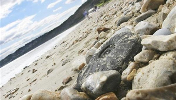 Jurassic Coast 600x344 - Active and Outdoors