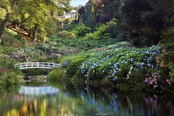 Trebah Gardens 600x400 - Film, TV and Literature